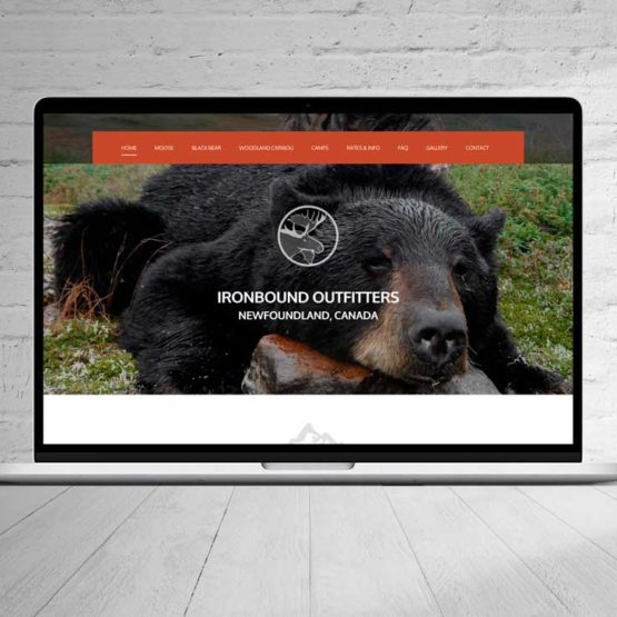 website design Newfoundland NL web design portfolio